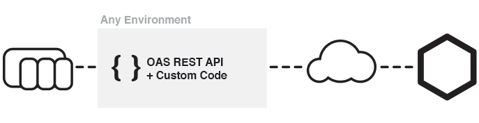 Reading and Writing Data with the OAS REST API